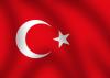 New car market in Turkey: 2012 data